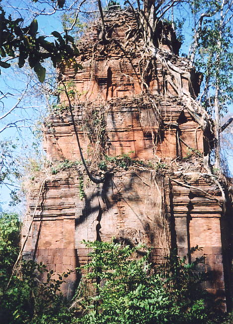 The central brick and laterite tower, surrounded and topped by vegetation, at Prasat Preah Neak Buos.