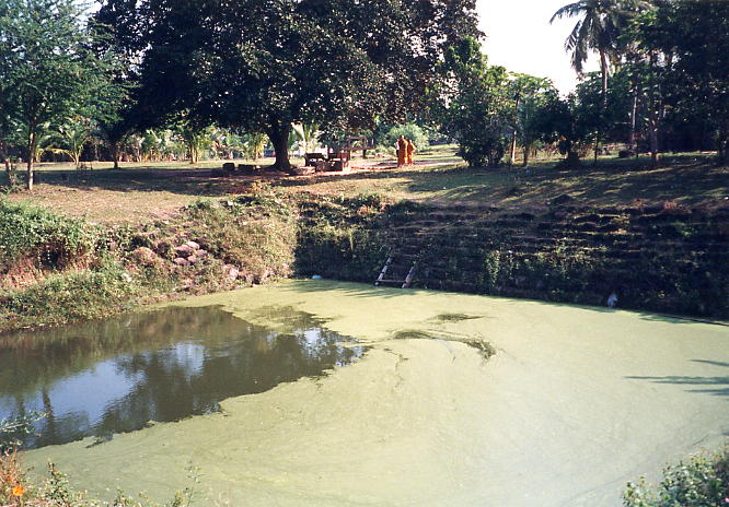 This laterite pool is where the monks and nuns from the nearby pagoda gather their water.