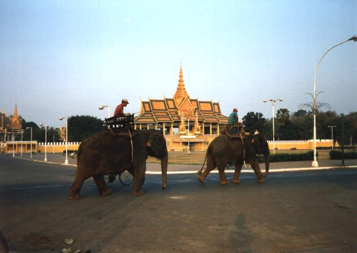 Early morning elephants and the Chan Chaya Pavilion.