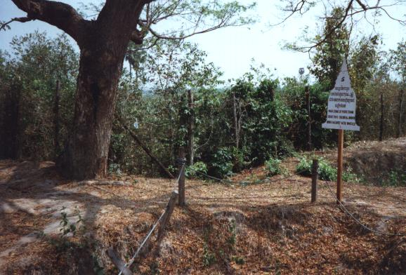 The 'killing tree' at Choeung Ek.