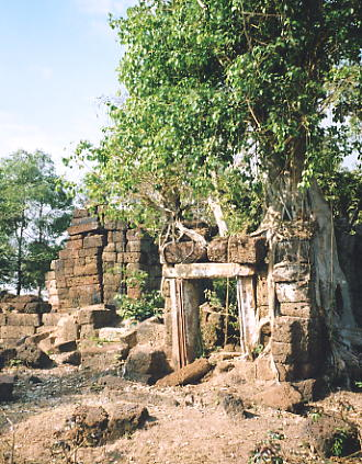 The entrance tower and tree at Prasat Takom, near Koul village.