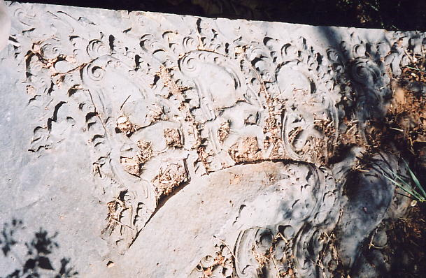 A defaced lintel carving we found lying in the vegetation.