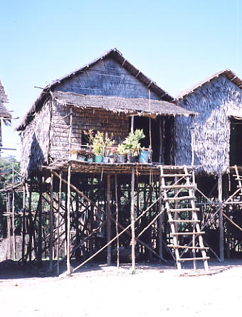 A typical homestead in Kompong Phluk, raised above the ground ready for the wet season.