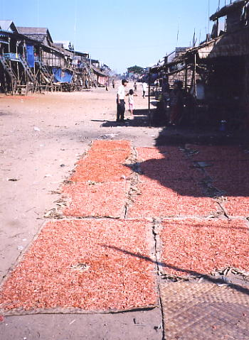 Mats of pink shrimp laid out to dry along the 'high street'.