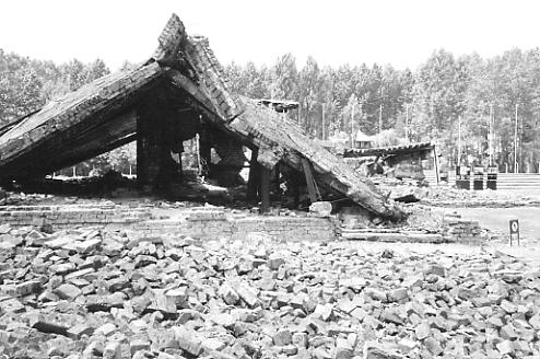 A ruined gas chamber at Birkenau.